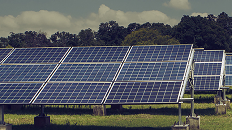 Rural Energy Access Programs: contrasting private and public values (Part I)